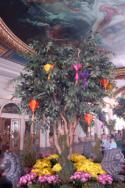 Prosperous Tree