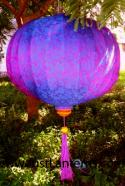 Purple Red Asian Lanterns - Vietnamese Purple Red Silk Lanterns