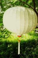 Ivory Asian Lanterns - Vietnamese Ivory Silk Lanterns