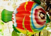 Paper Asian Lanterns - Vietnamese Paper Lanterns