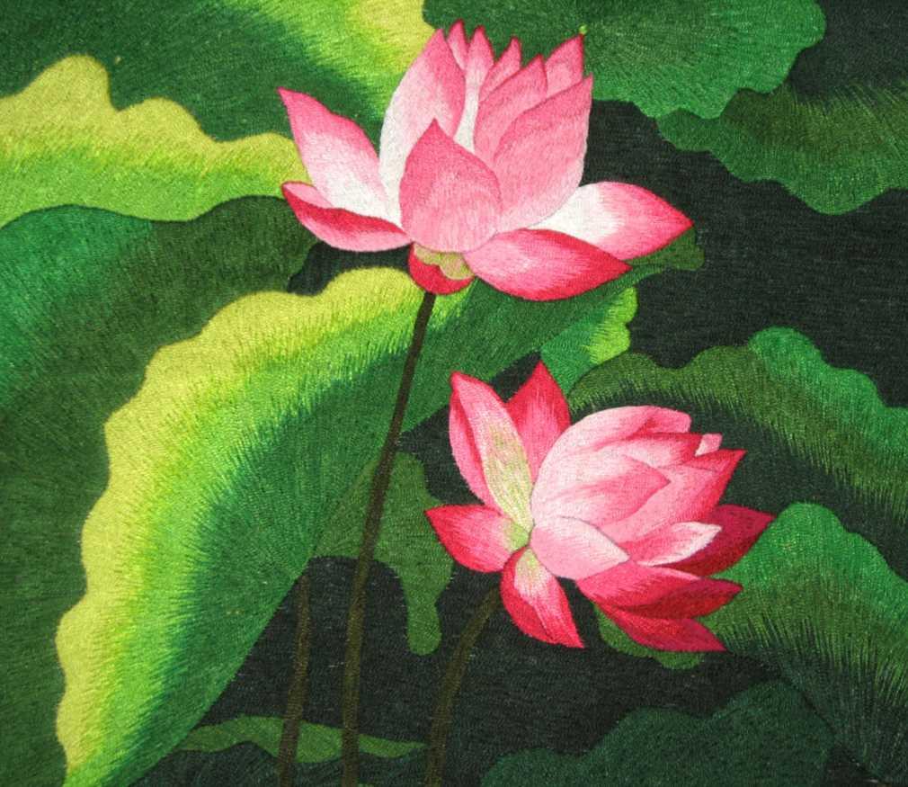 Pink lotus izmirmasajfo