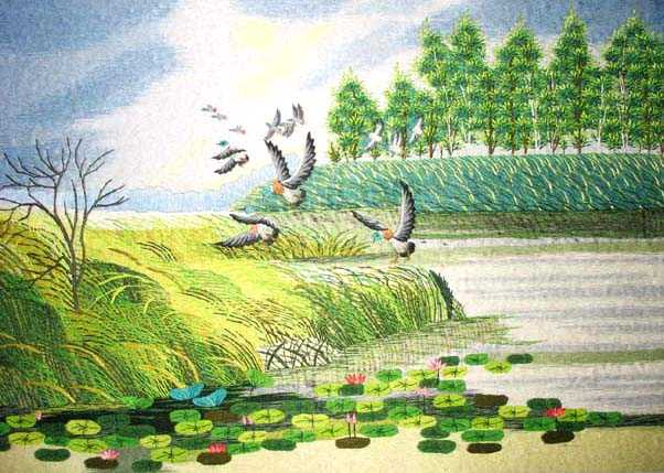Birds and Water Lillies