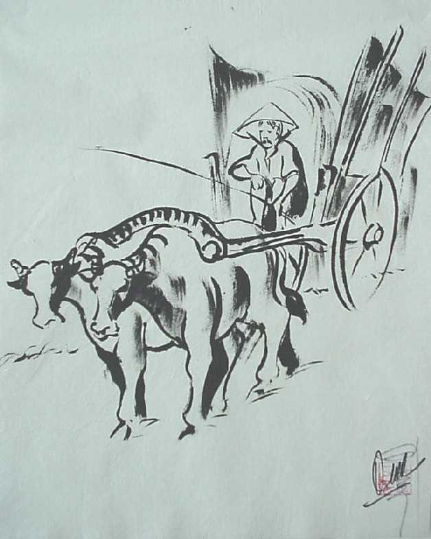 Buffalo Carriage